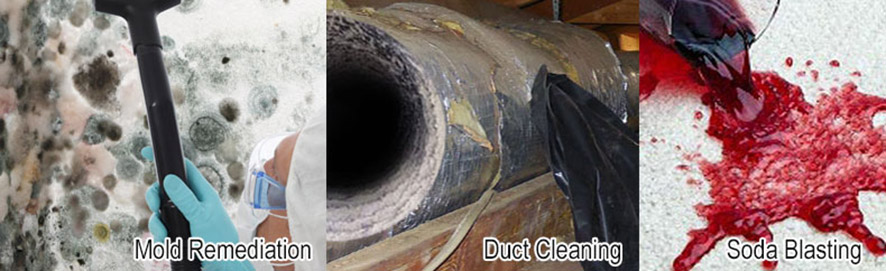 All American Duct Cleaning, Soda Blasting, Mold Remediation Services