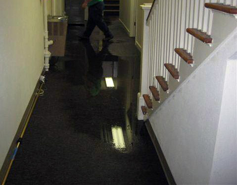 How The Cost Of Water Damage Restoration Is Determined