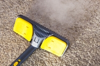 The Advantages of Professional Carpet Cleaning |Idaho Falls, ID