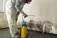 What to Do After Commercial Water Damage Restoration