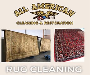 Oriental & High Value Area Rug Cleaning