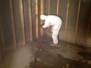 Mold remediation worker removing mold at a site